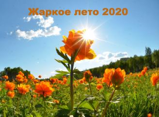 Жаркое лето 2020