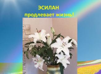 Эсилан для жизни растений